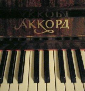 Ищу педагога, обучение игре на фортепиано