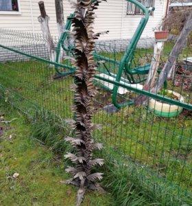 Растение из металла