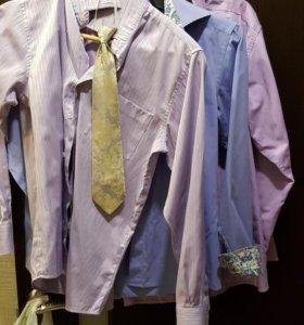 Рубашки школьные хлопок 158-164