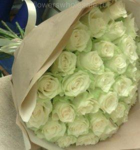 Розы мондиаль по оптовой цене