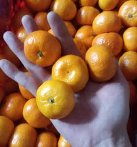 мандарины Перу