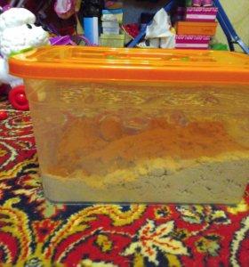 Кинетической песок