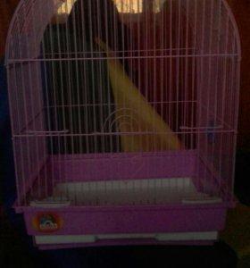 Клетка для птиц/грызунов
