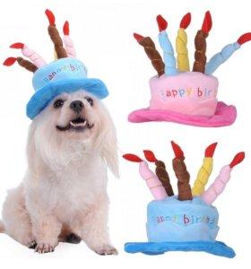 Шляпа для собаки