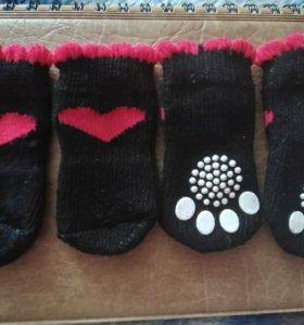Носочки для питомца