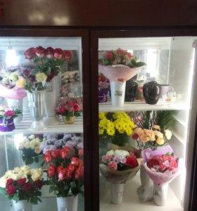 """холодильник для цветов """"карелия"""""""