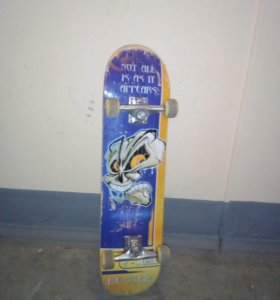 Скейтборд (роликовая доска)
