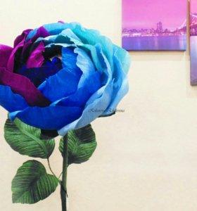 Гигантская роза с конфетами