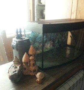 Панорамный аквариум 150 литров