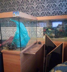 Угловой аквариум 250л с тумбой и аксессуарами