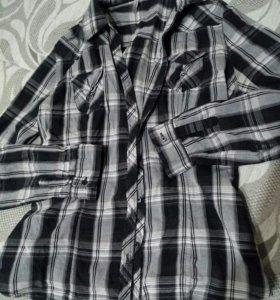 Рубашка Fishbone