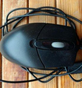 Мышка для компььютера