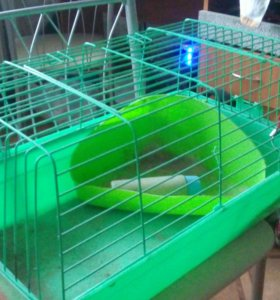 Клетка для грызунов, морских свинок
