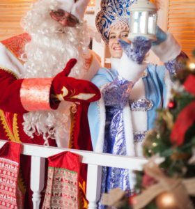 Дед Мороз и Снегурочка на дом❄