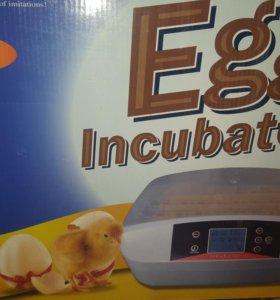 Инкубатор