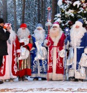 Дед Мороз и Снегурочка вызов на дом