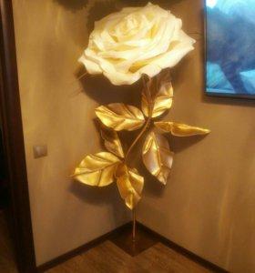 Цветок гигант.