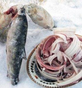 Нужны работники для продажи рыбы