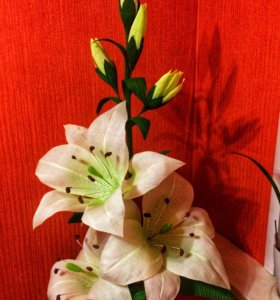 Ростовые цветы Лилия