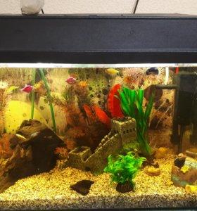 Продам аквариум!!!!