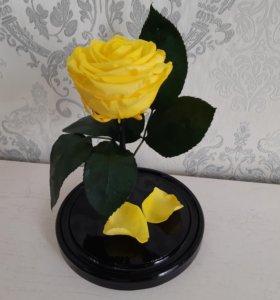 Желтая роза в колбе