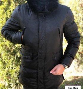 В наличии Зимняя куртка Phillips plain