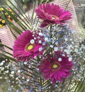 Принимаем заказы на свежесрезанные Цветы и букеты