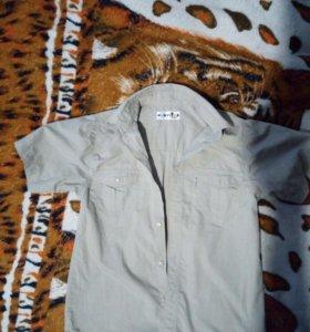 Рубашечки с коротким рукавом