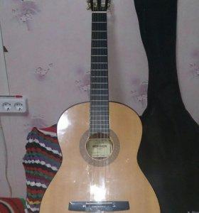 Гитара Гутер