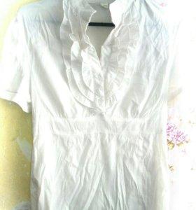 Блузки удлиненные