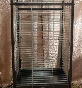 Клетка- вольер для средних и крупных попугаев.