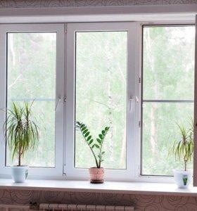 Пластиковые окна, двери, лоджии и балконные группы