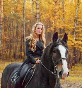 Конные прогулки в лес, заказы, фотосессии и аренды