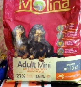 Сухой корм MOLINA для собак малых пород.