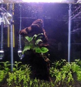 Новый Нано аквариум .30литров