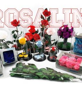 Оптовая база роз в колбе