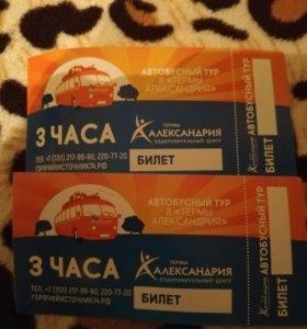 2 билета в термаАлександрия