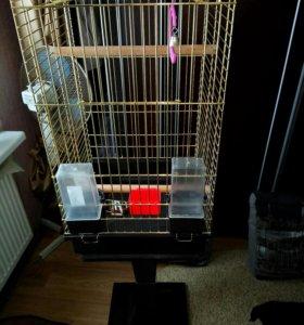 Клетка для птиц прямоугольная(золото)