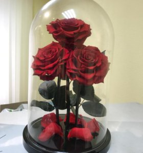 Розы в колбе трио Кинг
