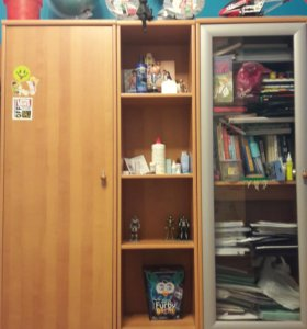 Шкафы и стеллаж.