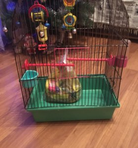 Клетка для попугая(корм в подарок )