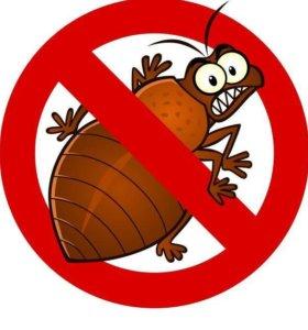 Уничтожение тараканов и клопов. Санобработка