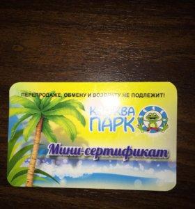 Билет в аквапарк