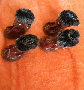 Обувь для собачки 4 размер