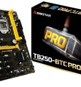 Материнская плата Biostar tb 250 pro 12 карт