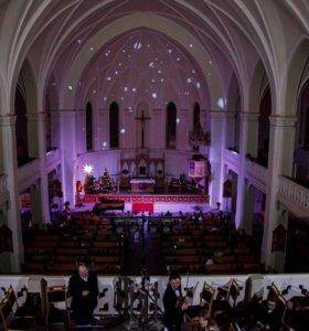 Концерт новогодний 15.12 (орган,сопрано),2 билета