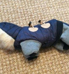 Зимний комбинезон для очень маленькой собачки