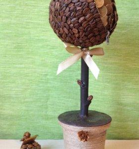 кофейное денежное дерево