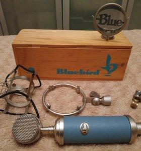 🎯Новый 🎤USB-микрофон BlueBird