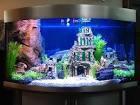 возму в дар детям аквариум